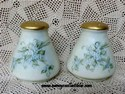 Blue Flowered Porcelain Bavaria Shakers